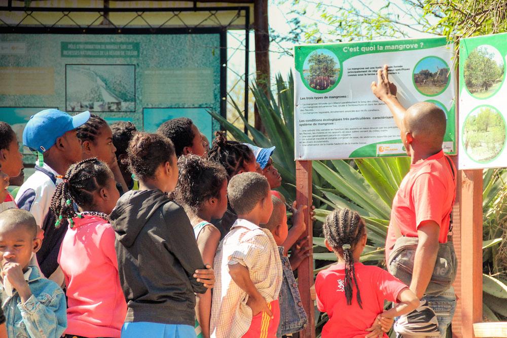 L'ONG Bel Avenir engagée à jamais dans la réhabilitation de la mangrove